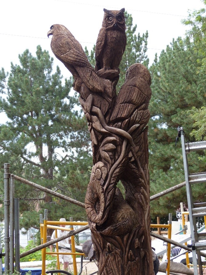 Chainsaw mama carves magic into a black walnut tree at